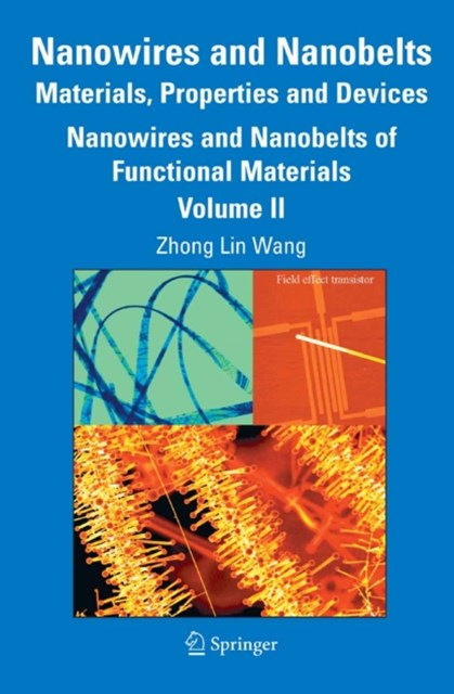 (ebook) Nanowires and Nanobelts: Materials, Properties and Devices