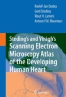 (ebook) Steding's and Viragh's Scanning Electron Microscopy Atlas of the Developing Human Heart - Reference Medicine