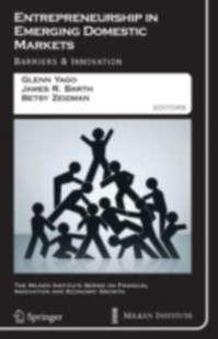 (ebook) Entrepreneurship in Emerging Domestic Markets - Business & Finance Ecommerce