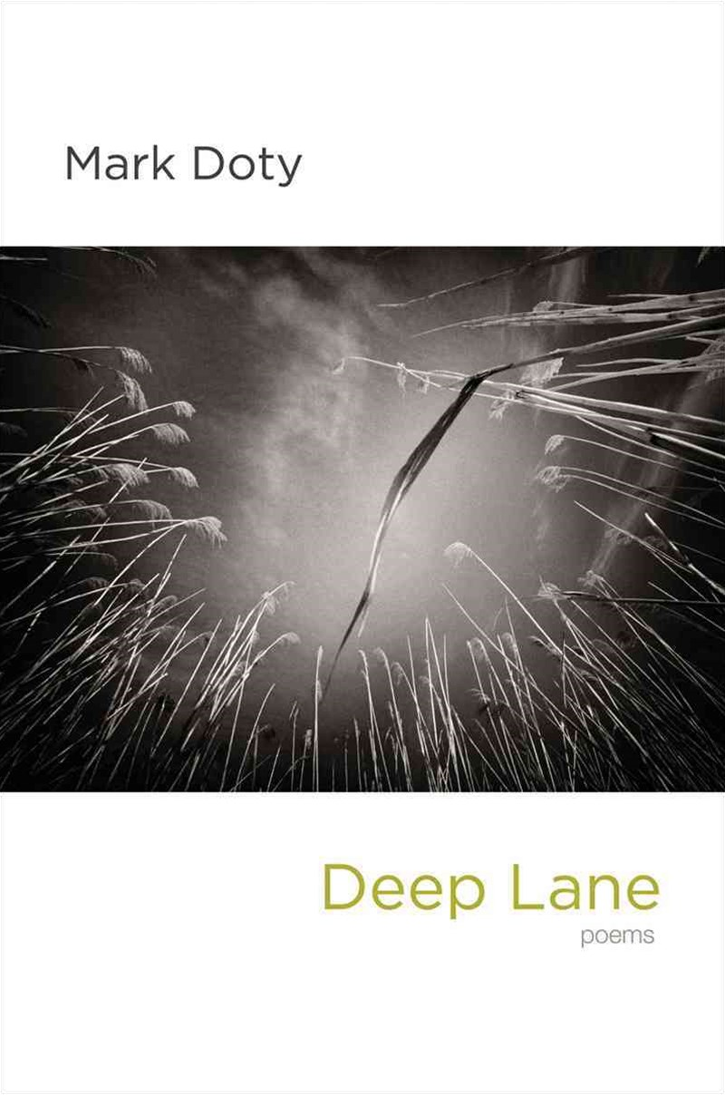 Deep Lane - Poems