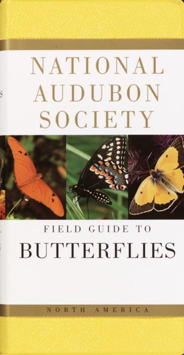 National Audubon Society Field Guide to North American Butterflies