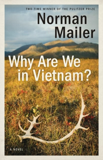 (ebook) Why Are We in Vietnam?
