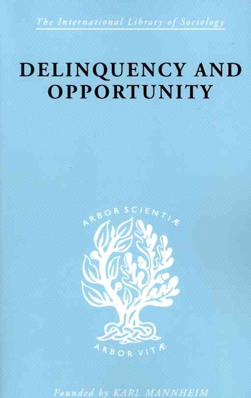 Delinquency and Opportunity