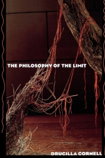 Philosophy of the Limit