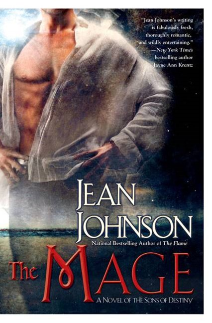 The Mage: Sons of Destiny Book 8