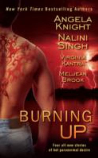 Burning Up: Four all-new stories of hot paranormal desire
