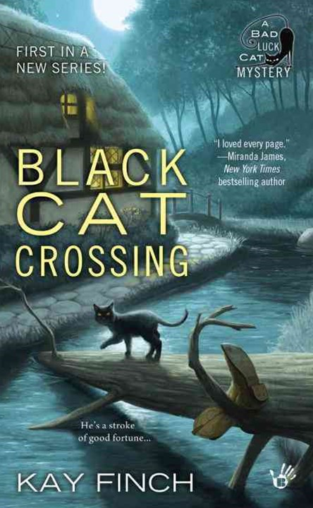 Black Cat Crossing: Bad Luck Cat Book 1