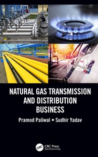 (ebook) Natural Gas Transmission and Distribution Business - Business & Finance Ecommerce