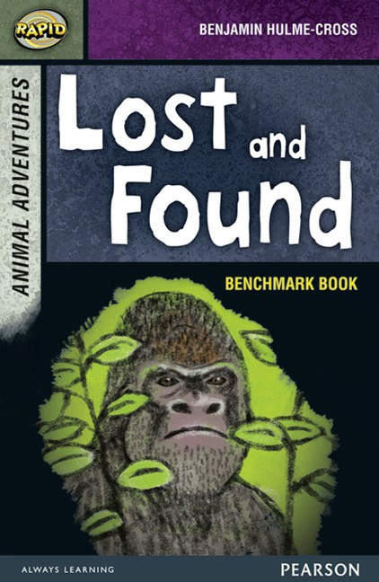 Rapid Stage 7 Benchmark Book: Lost and Found