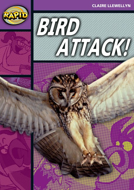 Rapid Stage 1 Set B: Bird Attack!
