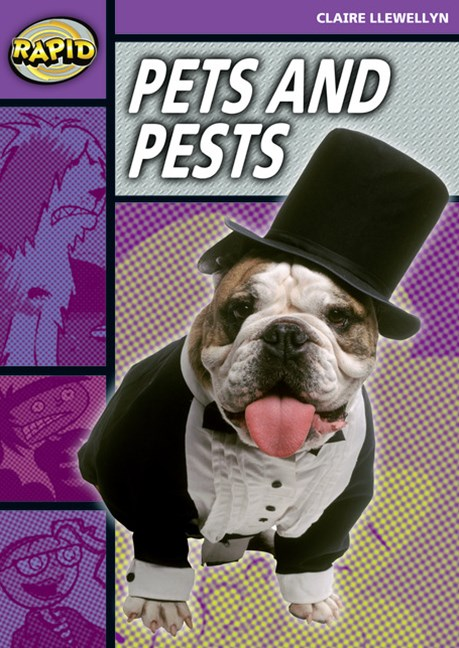 Rapid Stage 1 Set B: Pets and Pests