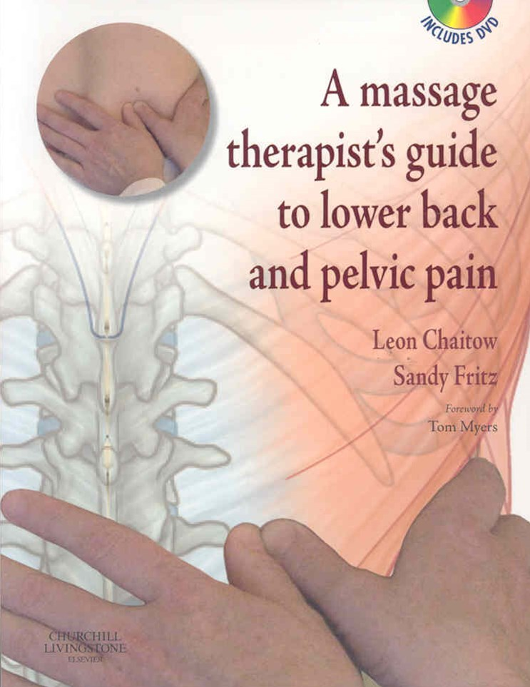 A Massage Therapist's Guide to Lower Back and Pelvic Pain