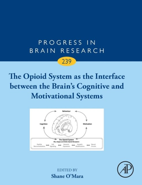 The Opioid System As the Brain's Interface Between Cognition and Motivation