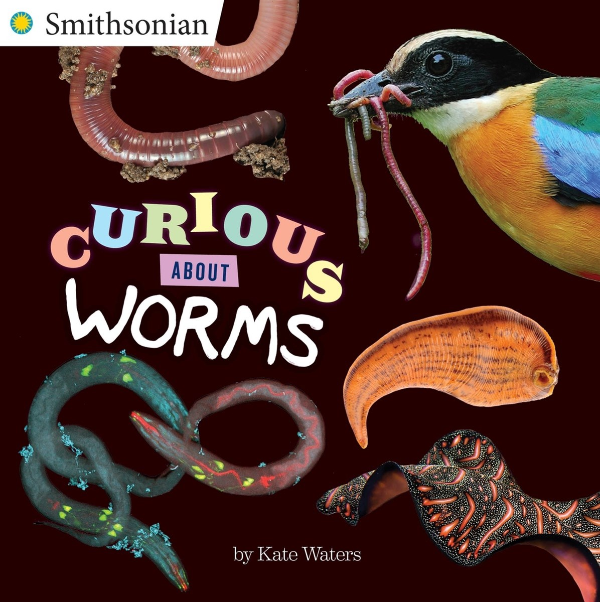 Curious About Worms
