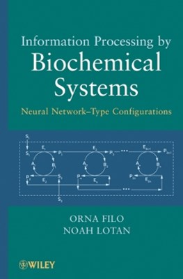 Information Processing by Biochemical Systems