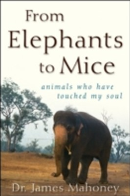 From Elephants to Mice