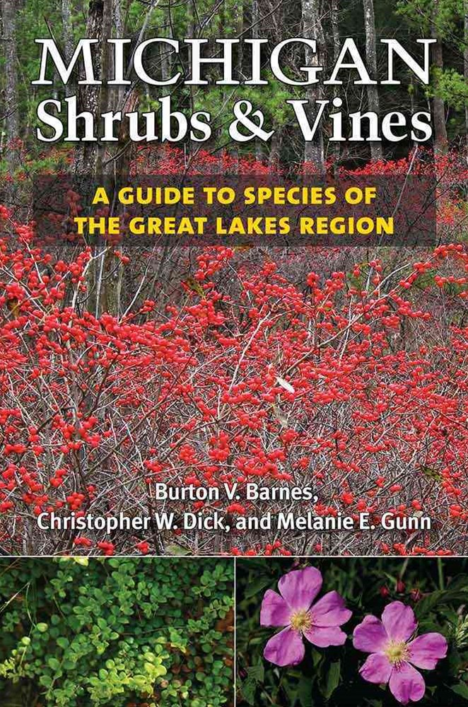 Michigan Shrubs and Vines
