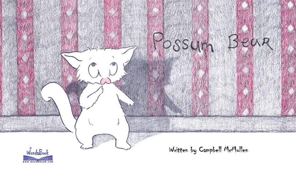 Possum Bear