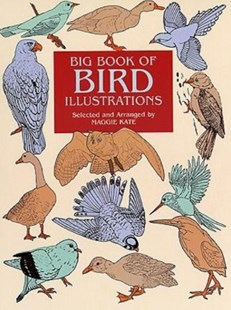 (ebook) Big Book of Bird Illustrations - Art & Architecture General Art