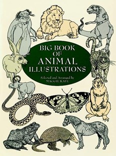 Big Book of Animal Illustrations by MAGGIE KATE (9780486404646) - PaperBack - Art & Architecture Art History