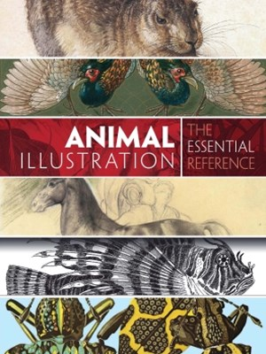 Animal Illustration: The Essential Reference