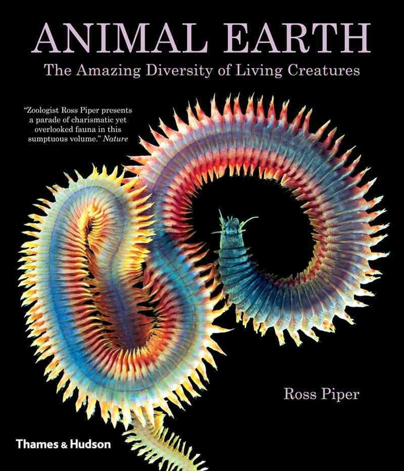 Animal Earth