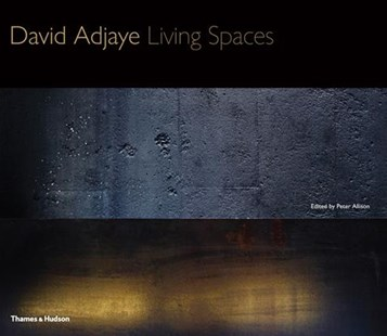David Adjaye by Peter Allison, Peter Allison (9780500343258) - HardCover - Art & Architecture Architecture