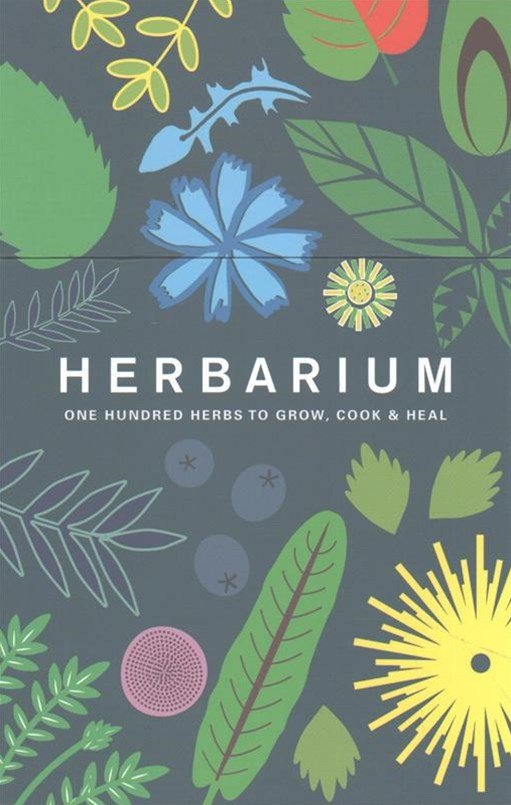 Herbarium index cards