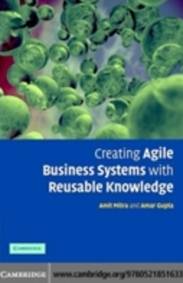Creating Agile Business Systems with Reusable Knowledge