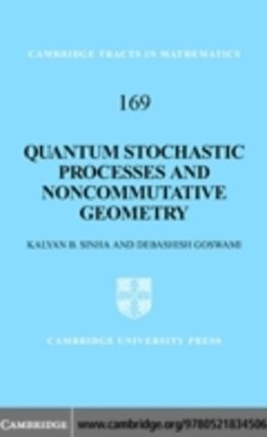 (ebook) Quantum Stochastic Processes and Noncommutative Geometry