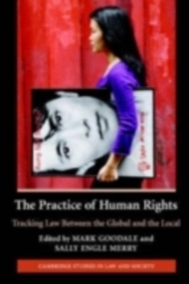 (ebook) Practice of Human Rights
