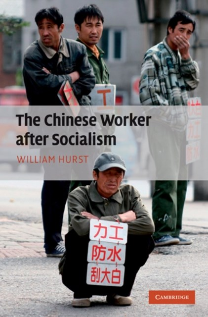 Chinese Worker after Socialism