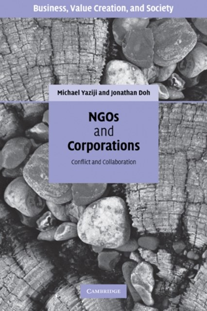 (ebook) NGOs and Corporations