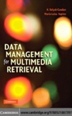 Data Management for Multimedia Retrieval
