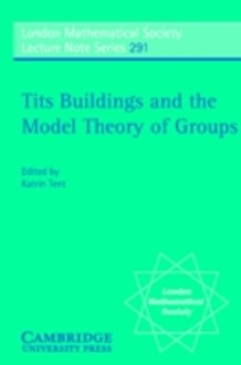 Tits Buildings and the Model Theory of Groups