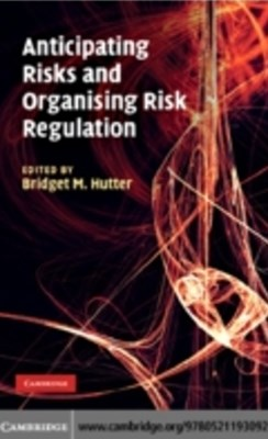 Anticipating Risks and Organising Risk Regulation
