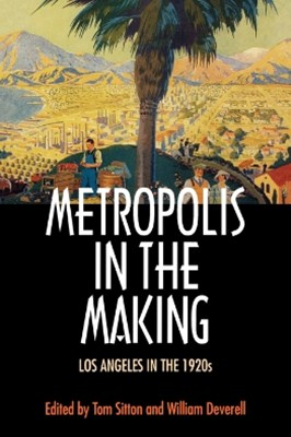 (ebook) Metropolis in the Making