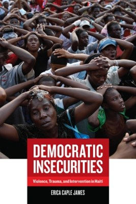 (ebook) Democratic Insecurities