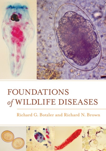 (ebook) Foundations of Wildlife Diseases