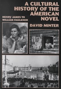 A Cultural History of the American Novel, 1890–1940 by David L. Minter (9780521467490) - PaperBack - Reference