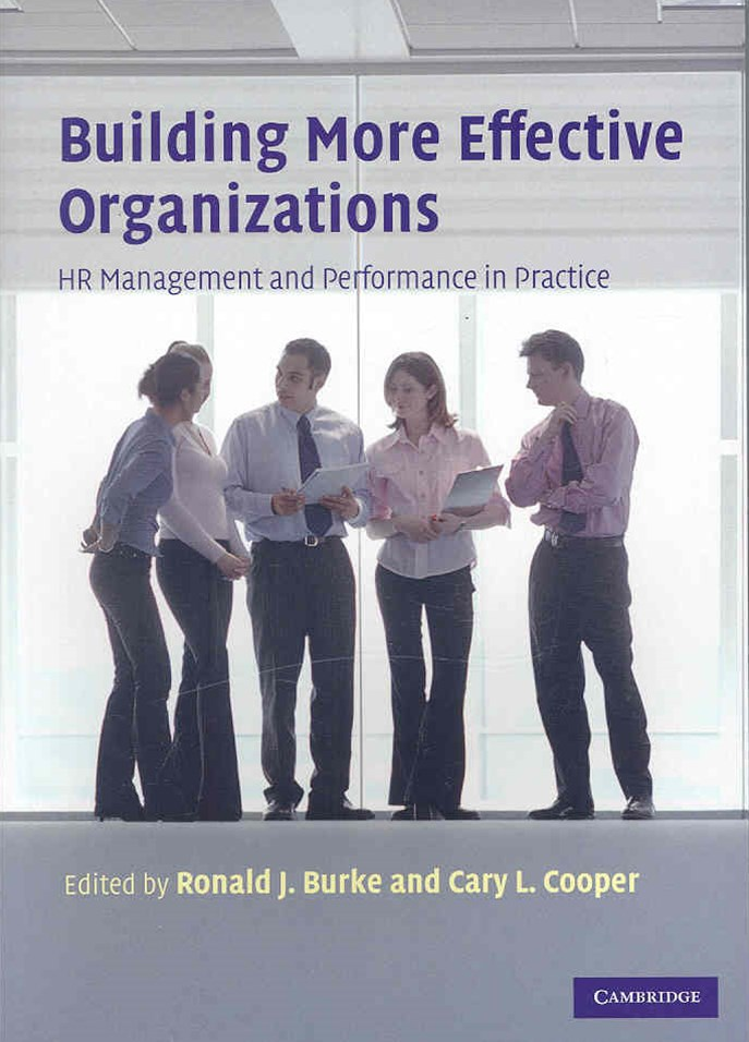 Building More Effective Organizations