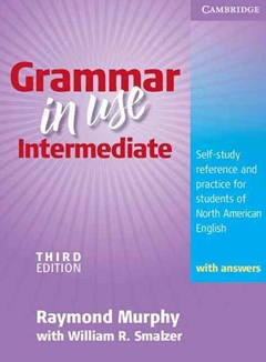 Grammar in Use Intermediate Student