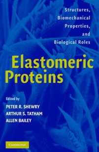 Elastomeric Proteins by Peter R. Shewry, Arthur S. Tatham, Allen J. Bailey, Peter R. Shewry, Arthur S. Tatham, Allen Bailey (9780521815949) - HardCover - Science & Technology Biology