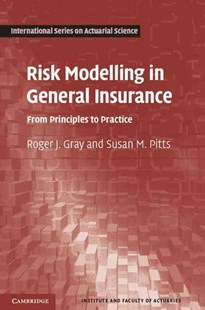 Risk Modelling in General Insurance by Roger J. Gray, Susan M. Pitts (9780521863940) - HardCover - Business & Finance Finance & investing