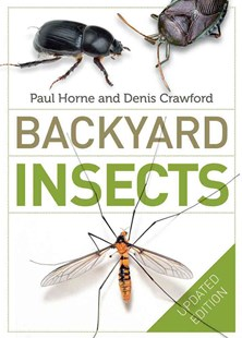 Backyard Insects Updated Edition by Paul Horne, Denis Crawford (9780522869101) - PaperBack - Pets & Nature Wildlife
