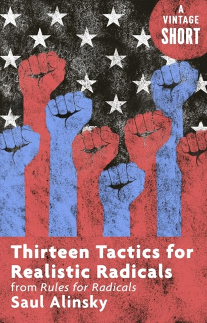(ebook) Thirteen Tactics for Realistic Radicals