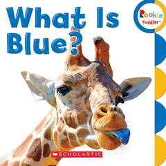 What Is Blue?