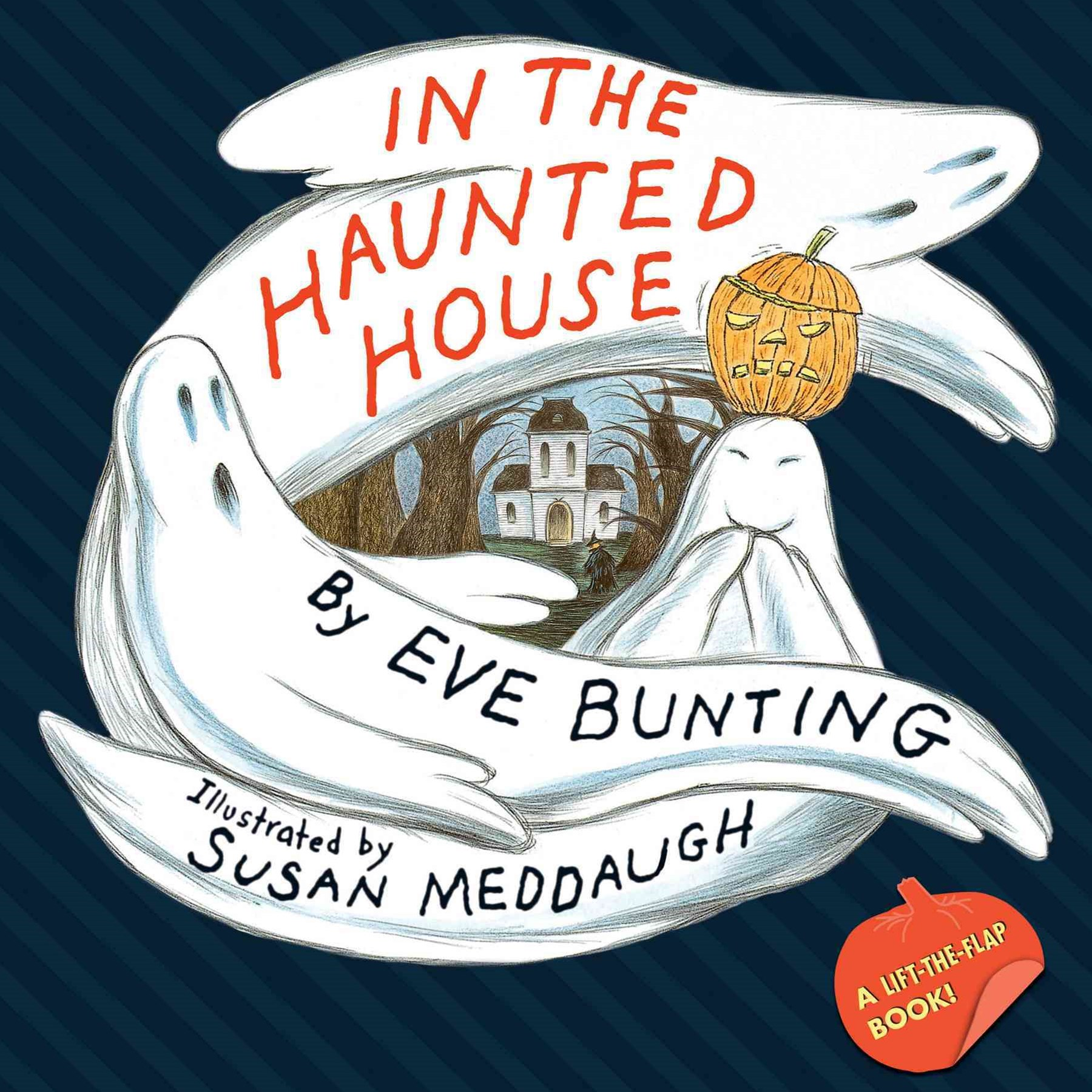In the Haunted House     (A Touch and Feel Lift-the-Flap Book)
