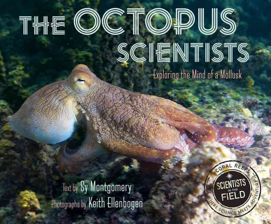 Octopus Scientists: Exploring the Mind of a Mollusk