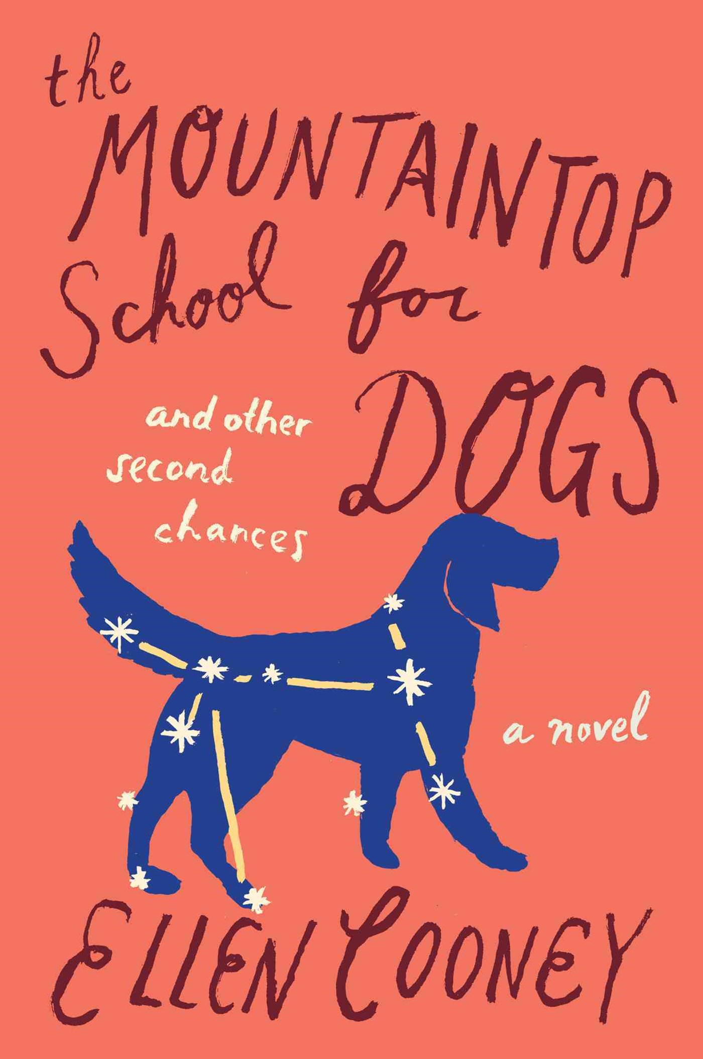 Mountaintop School for Dogs and Other Second Chances